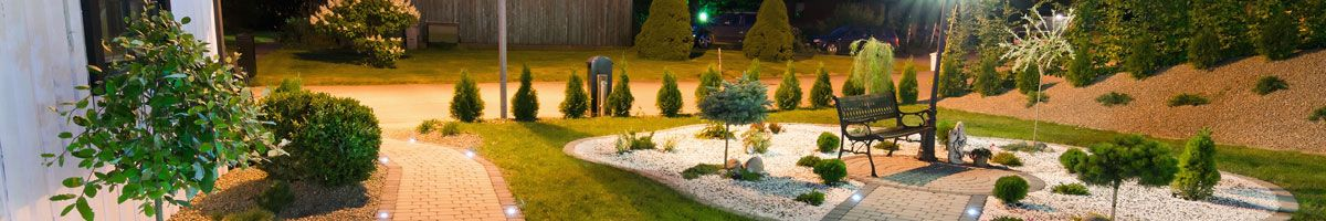 Domestic garden with electrical lighting